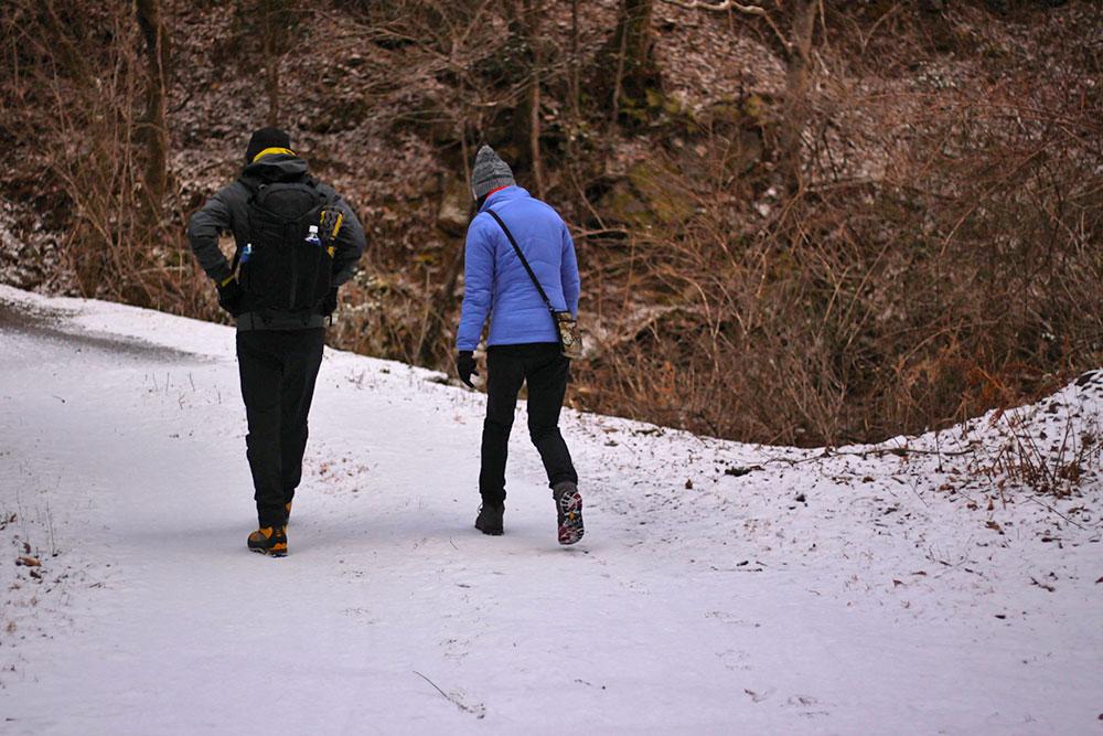 珍しく雪が覆った林道をハイキング