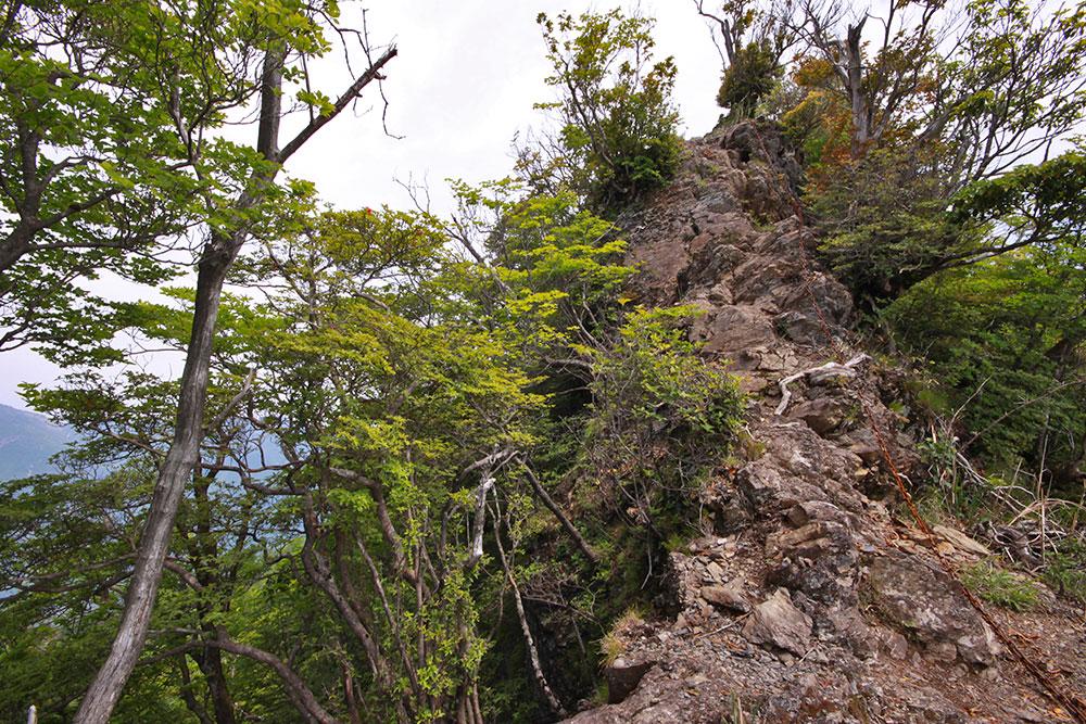 ちょっとした岩場を歩くような気分で楽しめます