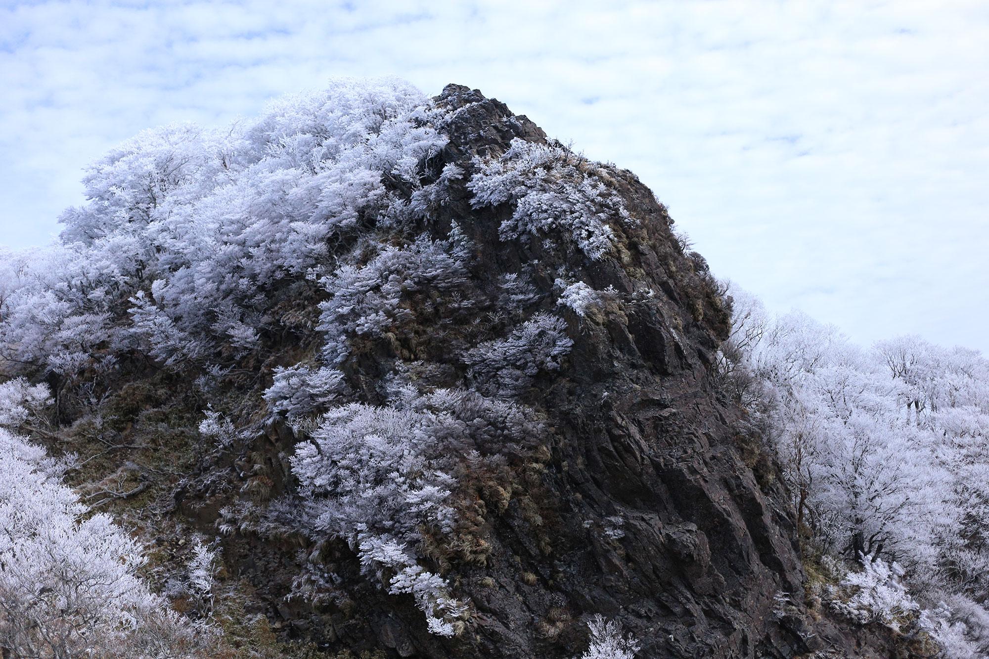 風穴コースから眺める祖母山方面の霧氷
