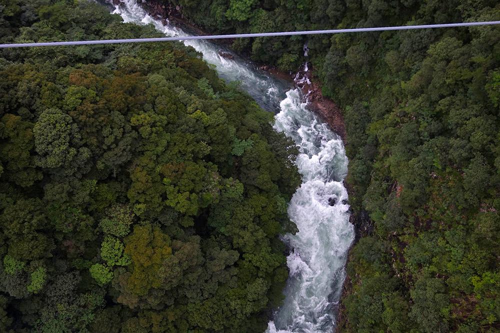 吊橋の上から眺める照葉樹と本庄川の激流