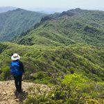 初の祖母山ハイキングを楽しむ方にご一緒させていただいて、新緑と花をを満喫