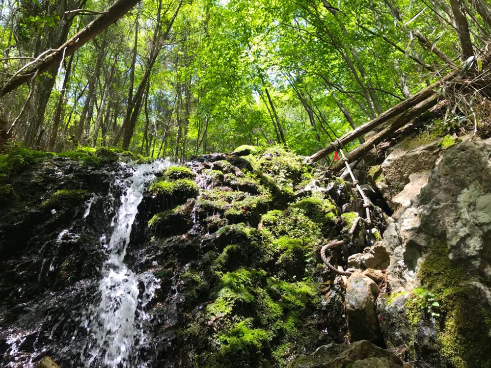 これからの季節は谷で水を楽しむのも最適な季節