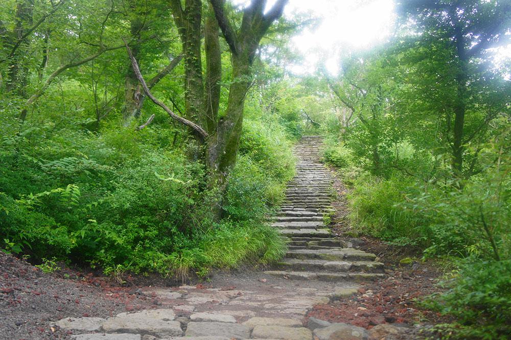 夏の緑が美しい登山口付近