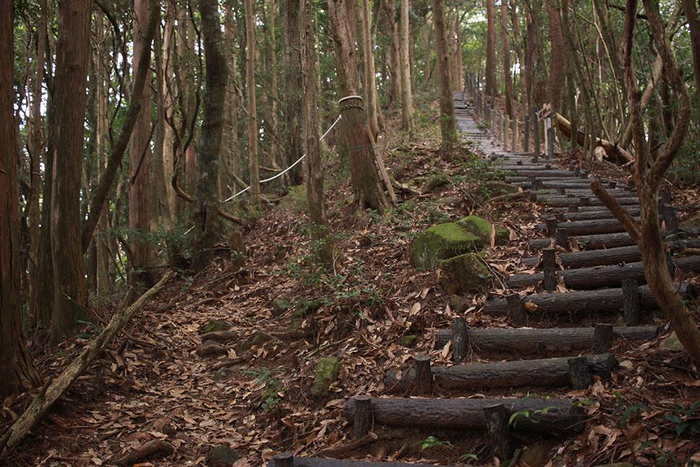 とても手入れされた登山道