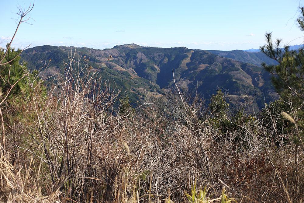 人と自然が共存する美しい森の諸塚村