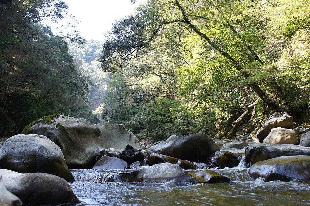 加江田渓谷の清流