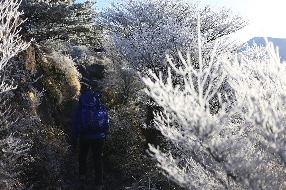 霧氷を眺めながらの登山道