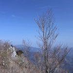 諸塚の福寿草と黒岳からの仕事打ち合わせ