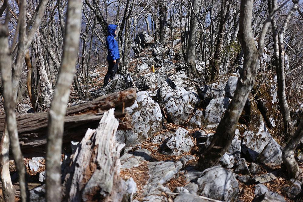 石灰岩独特のかっこいい登山道