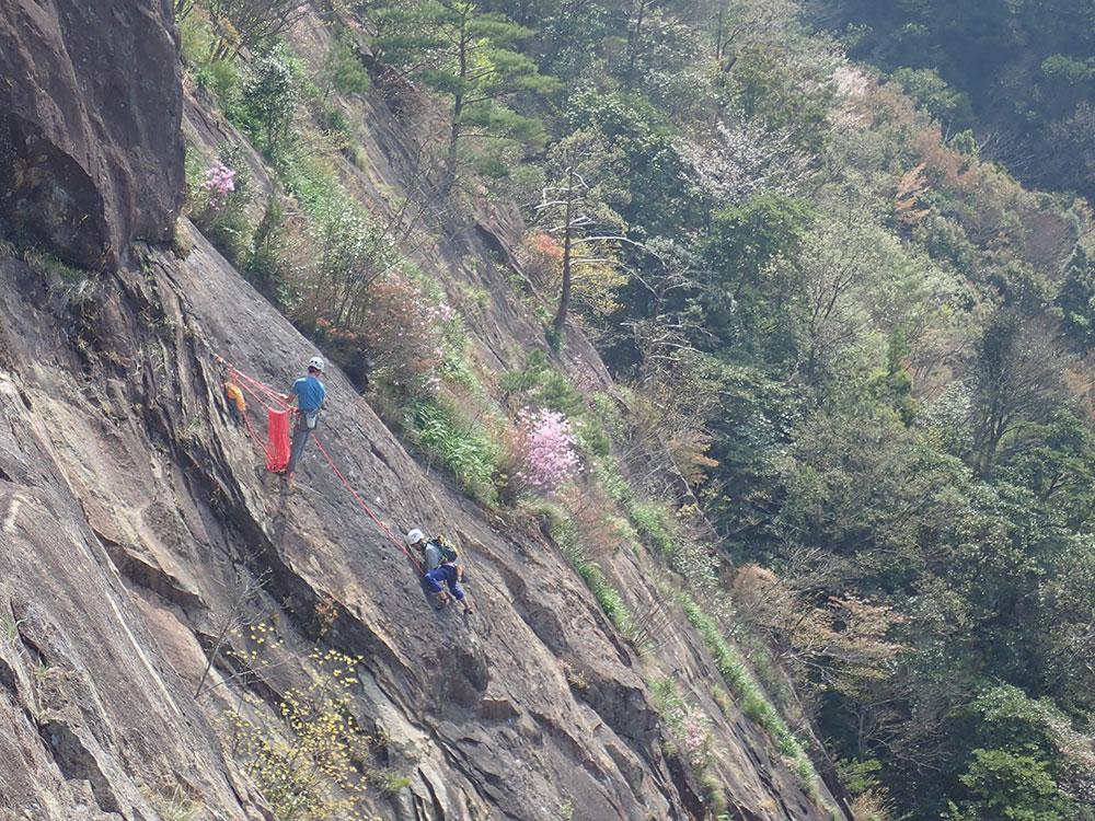 花の咲く岩場でクライミング