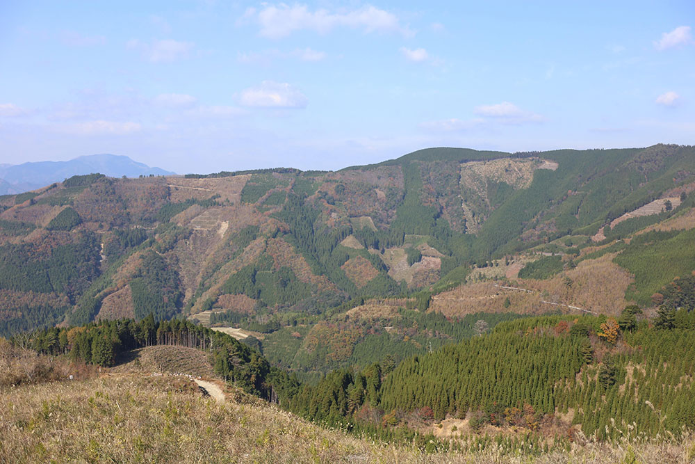 僕の好きな諸塚村の里山風景