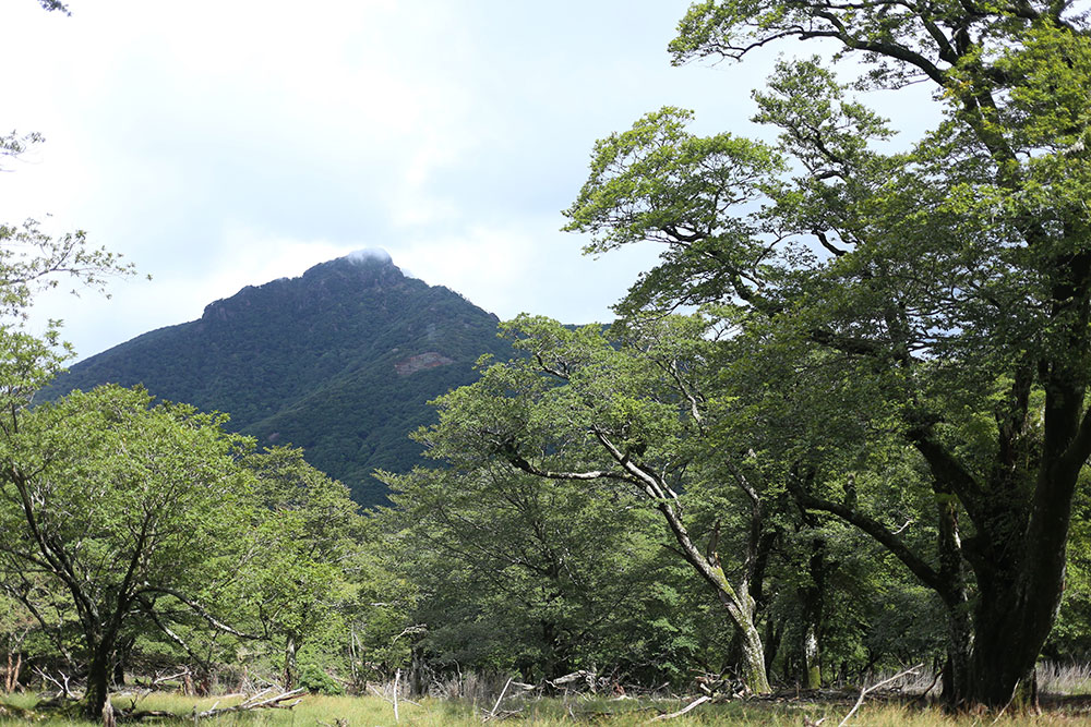 休憩しながら眺める祖母山