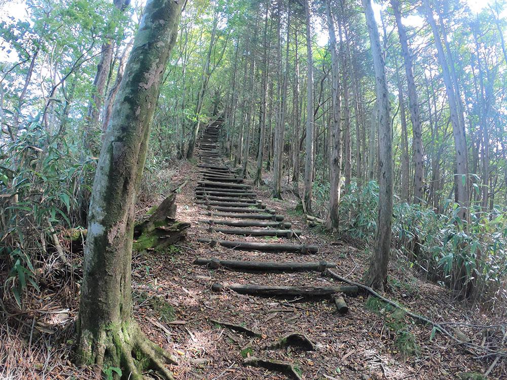 急な階段の箇所