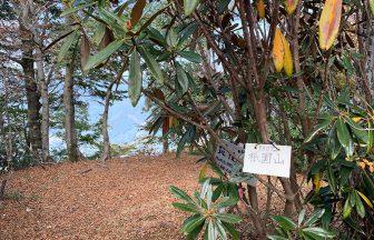 祇園山山頂