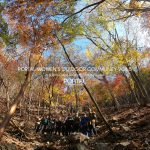 PORTAL WOMEN'S OUTDOOR COMMUNITY Vol.5 -古祖母山-
