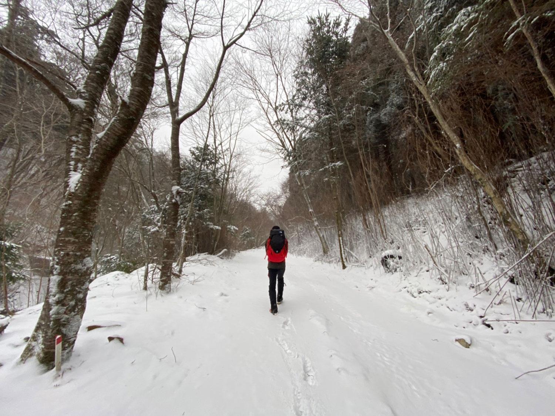林道をしばし歩いて