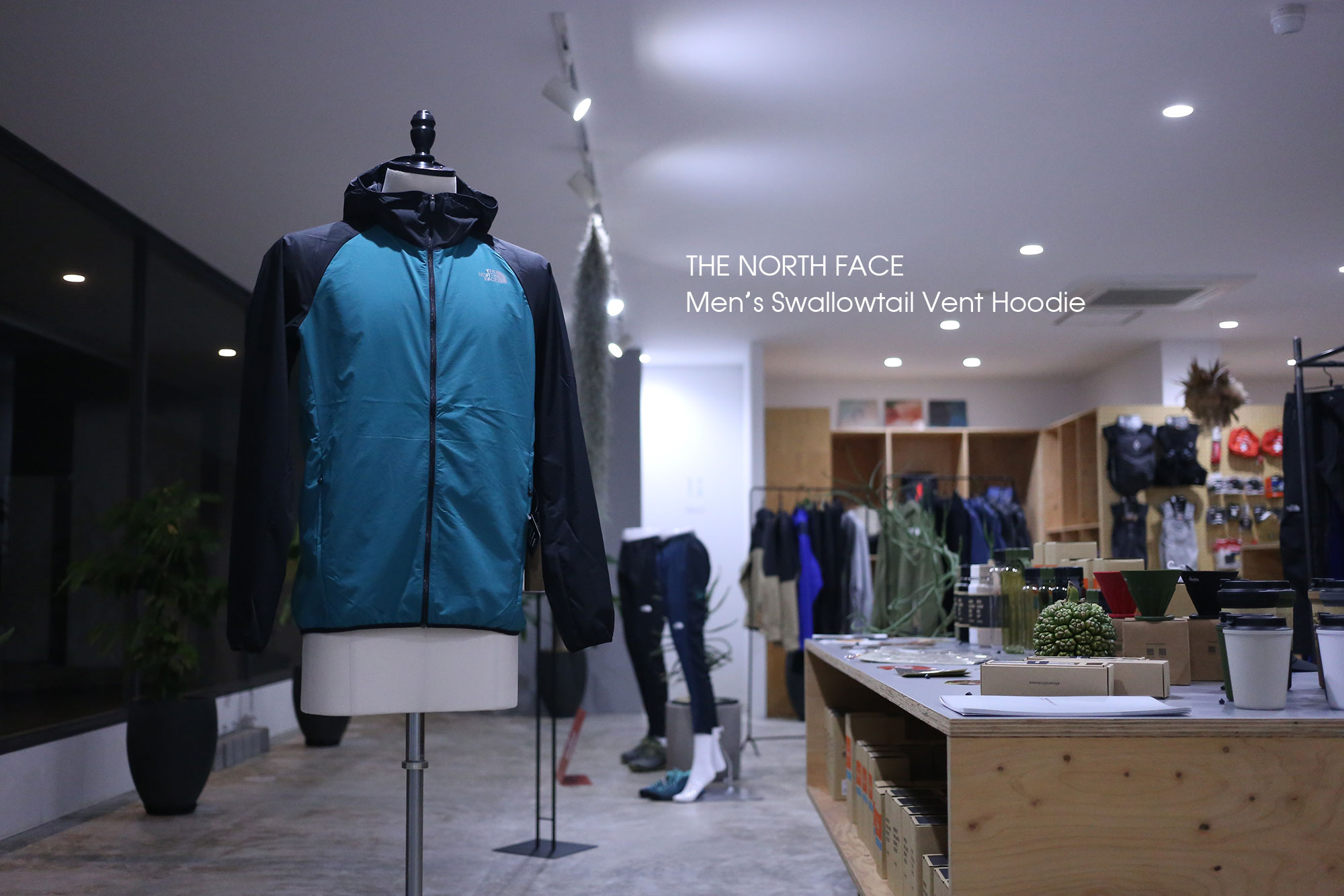 THE NORTH FACE -Swallowtail Vent Hoodie-