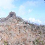 鹿納山とソボサンショウウオ