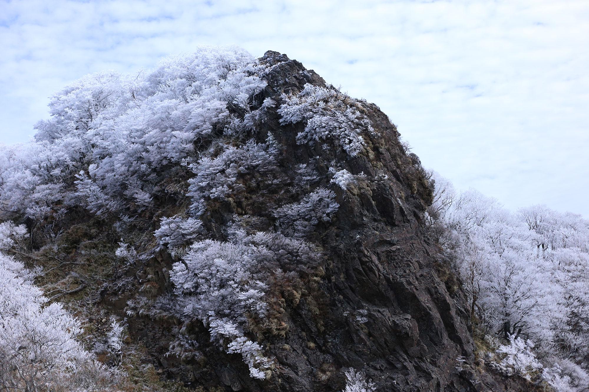 霧氷を纏った美しい山容
