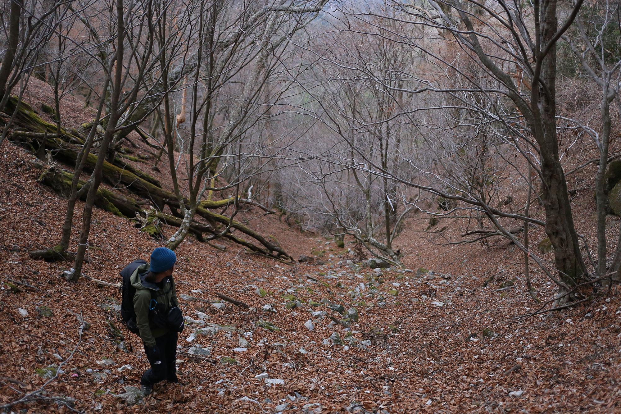 お化粧山へ登る急登
