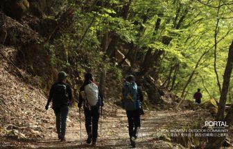 帰路の林道にて