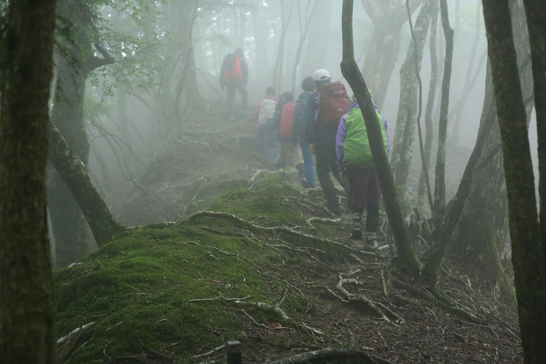 三方岳の森、最高でした