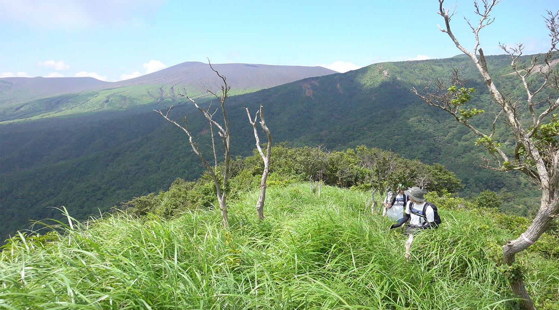 霧島の絶景を眺めながらガサガサします...