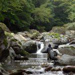 PORTAL WOMEN'S OUTDOOR COMMUNITY -お客様の渓流釣りチャレンジ-