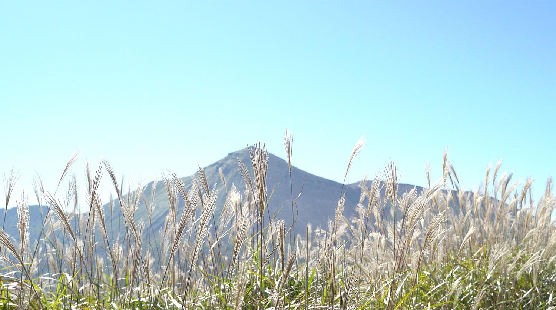高千穂峰とススキ